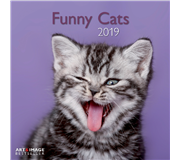KALENDER 2019 TENEUES ART&IMAGE FUNNY CATS 30X30CM